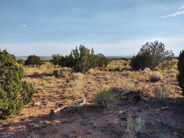 TBD Runway Road, Snowflake, AZ 85937