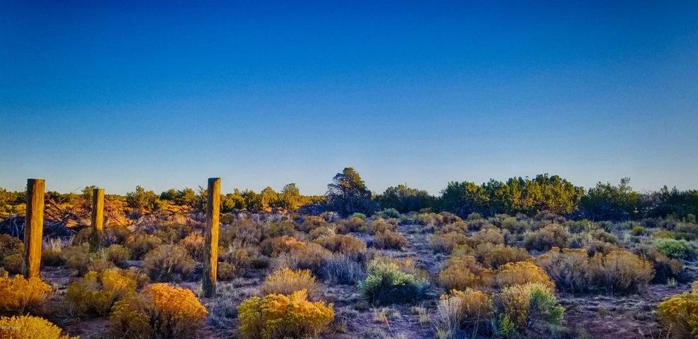 Lots 201 & 202 Woodland Valley Ranch 02, St. Johns, AZ 85936