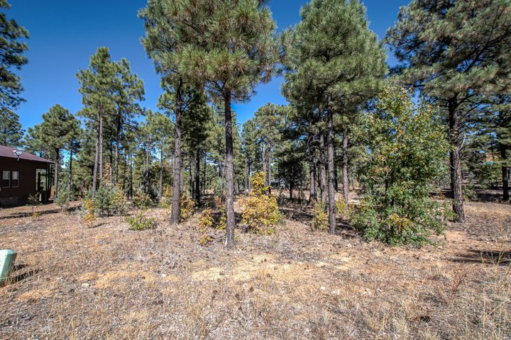 340 E Huckleberry Lane, Show Low, AZ 85901