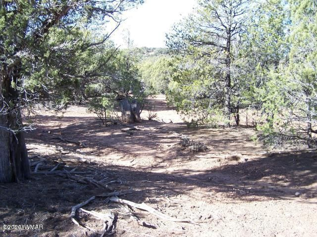 000 Timber Ranch Road, Linden, AZ 85901