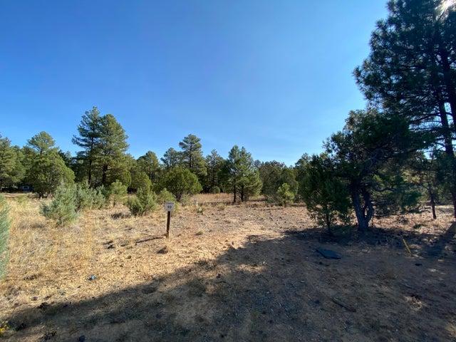4610 W Hawthorn Road, Show Low, AZ 85901