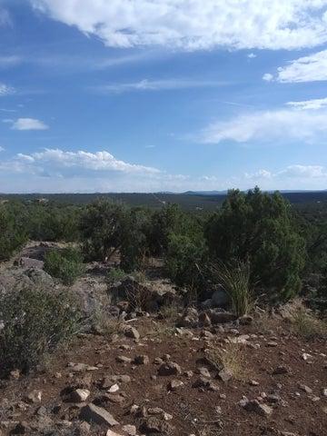 28 County Road 8301, Lot# 451, Concho, AZ 85924