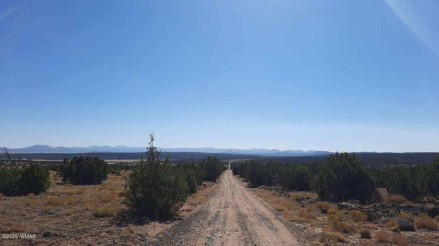 85 County Road N8522, Concho, AZ 85924