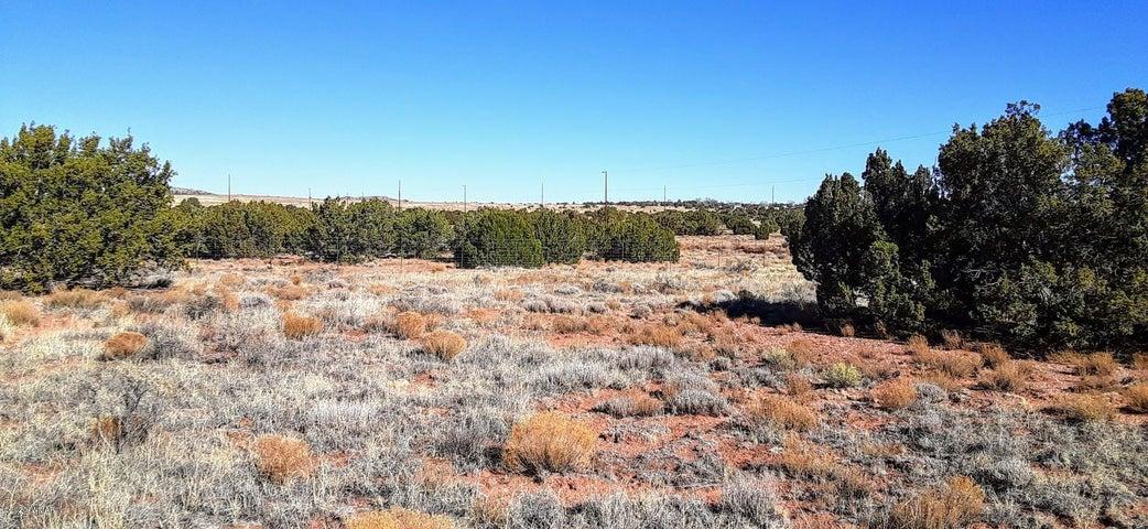 Parcel 013D Bum Heel Ranch Road, Snowflake, AZ 85937