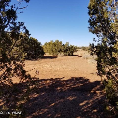 6.14 acres E Center Street, TBD, Taylor, AZ 85939