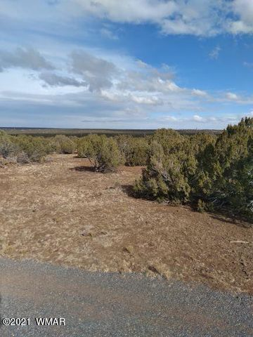 TBD Parcel 304-78-002, White Mountain Lake, AZ 85912
