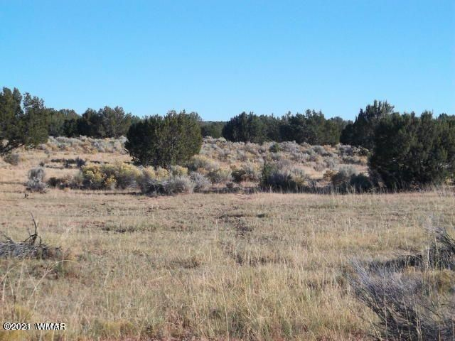 Lot 151 Witch Well Ranches, CR N7210, St. Johns, AZ 85936