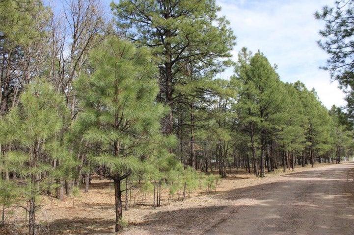 4005 Night Hawk Loop, Pinetop, AZ 85935