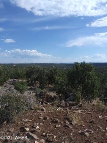 26 County Road 8301, Concho, AZ 85924