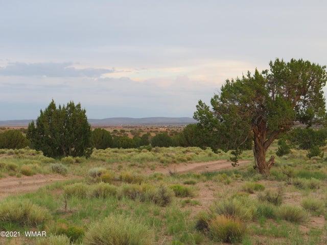 Woodridge Ranch Unit 15 Lot #614, Concho, AZ 85924