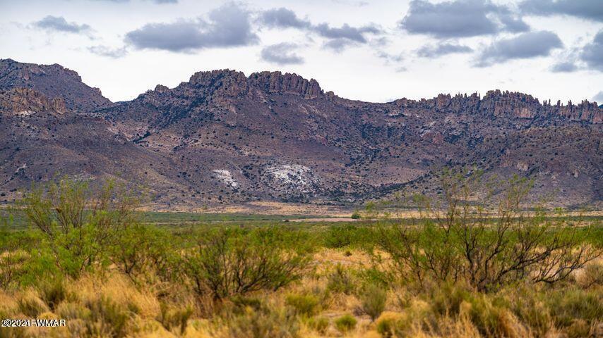 Three Triangle Ranches #38, 20 Acres, Portal, AZ 85632