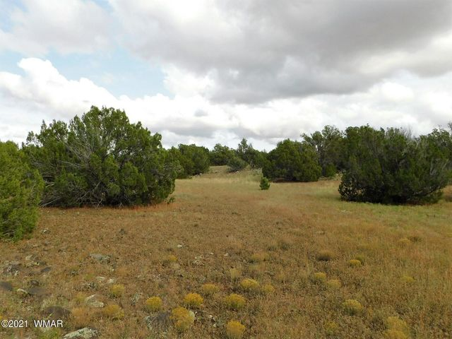 Plenty of Privacy and level areas for homesite.